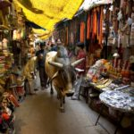 Varanasi Walk